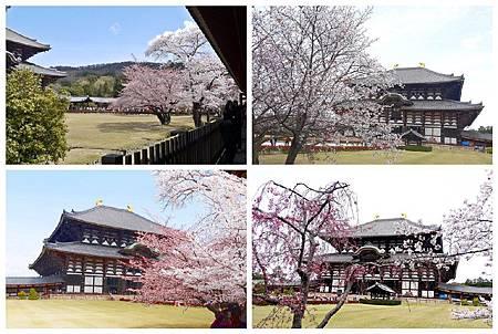 P1440940 奈良~.東大寺. (21.23.50.51).jpg
