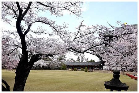 P1440940 奈良~.東大寺. (25).jpg