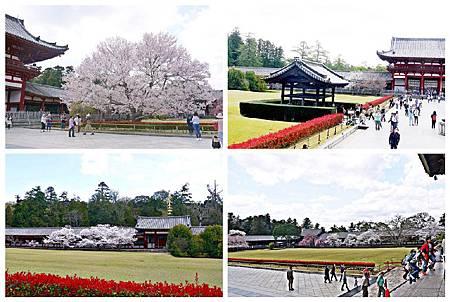 P1440940 奈良~.東大寺. (47.43.29.27).jpg