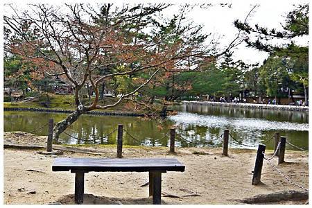 P1440940 奈良~.東大寺. (54).jpg