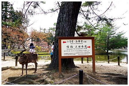 P1440940 奈良~.東大寺. (57).jpg