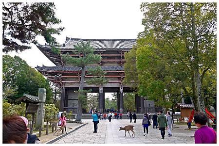 P1440940 奈良~.東大寺. (65).jpg