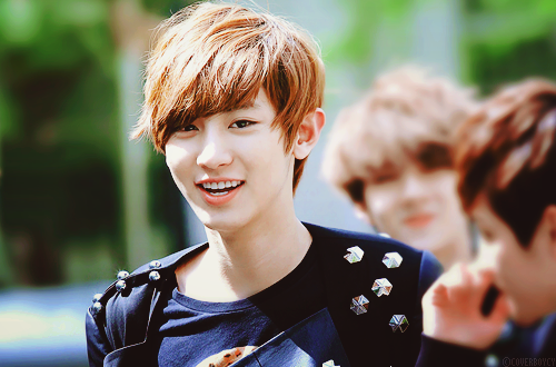 piyanan48_files_wordpress_com_2012_11_chanyeol-chanbaek-exo-couple-31543557-500-330
