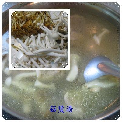 cats~菇煲湯