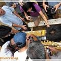 DSC2010_0815_144837.jpg
