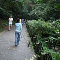 虎山溪自然步道