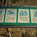 地質解說牌