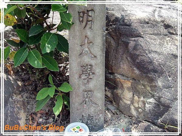 DSC2010_0814_115328.jpg