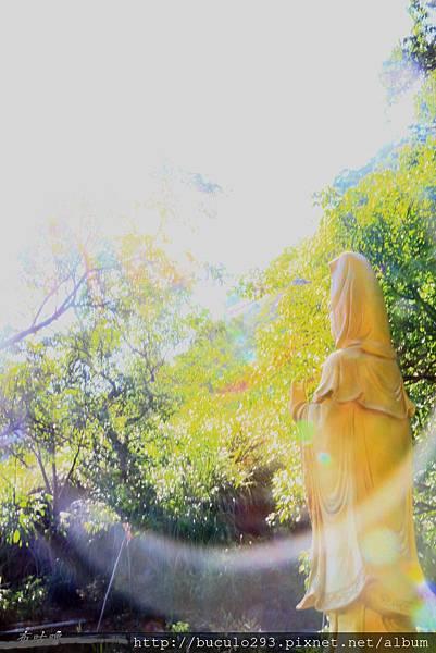 龍鳳谷2013 (143)