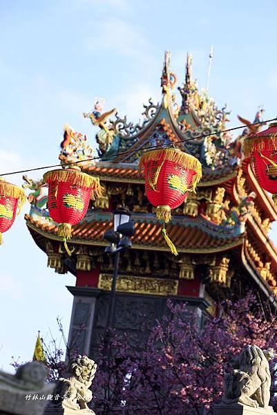 竹林寺春櫻 613