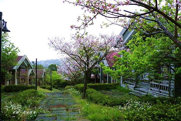 菁山遊憩區 337 (54)