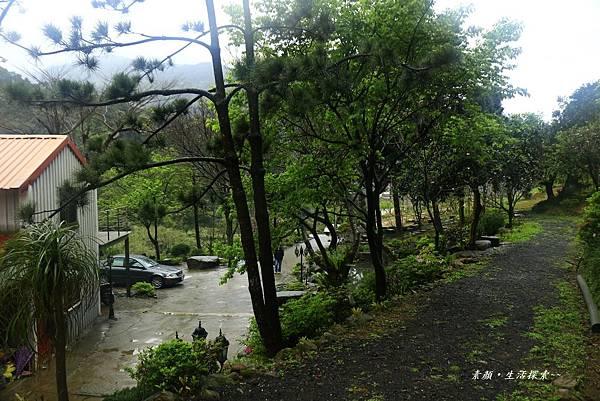 三芝吉野櫻民宅、楓樹湖 856