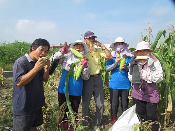 協會理事農田-採摘認識-玉米及苦瓜2