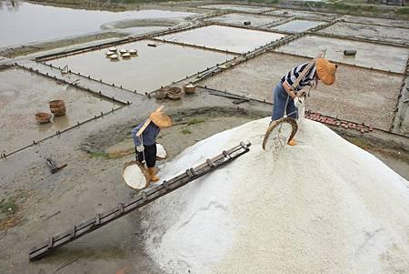 鹽工們一步一腳將收成的洲南白金鹽挑上鹽堆