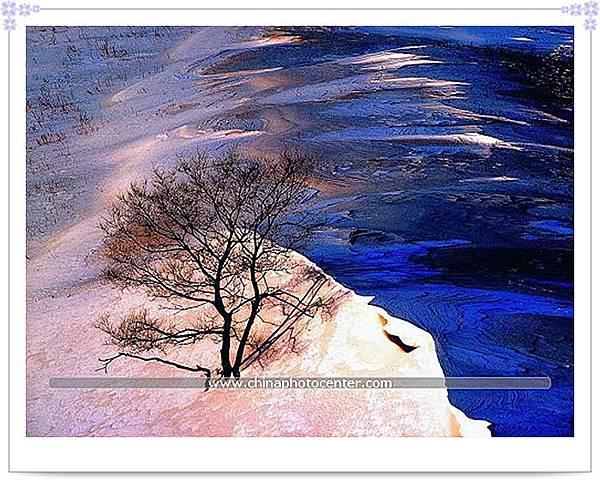 風與雪的造化
