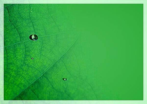 slide0002_image017.jpg