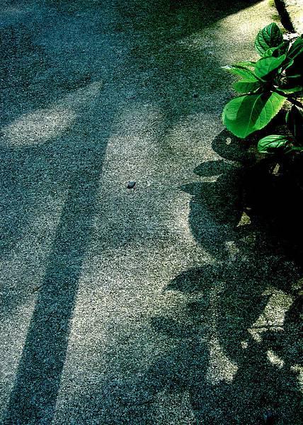20060904_1 145.jpg