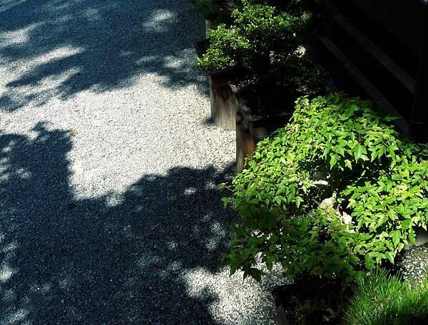 20060904_1 210.jpg