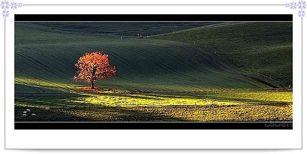 slide0001_image001.jpg