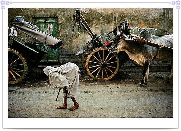 INDIA-10212.jpg