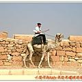 騎駱駝的警察
