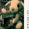 粉紅狗08.JPG