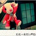 粉紅狗29.JPG