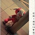粉紅狗34.JPG