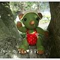抹茶熊1.jpg