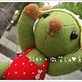 抹茶熊4.jpg