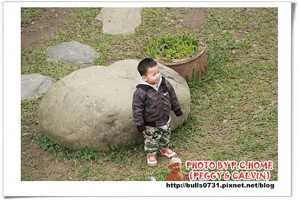 IMG_2504P11.jpg