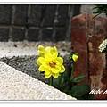 nEO_IMG_IMG_1163.jpg