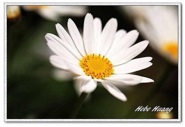 nEO_IMG_IMG_1348.jpg