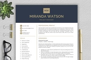 resume_049_preview1a-.jpg