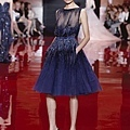 elie-saab-fall-2013-2014-couture.jpg