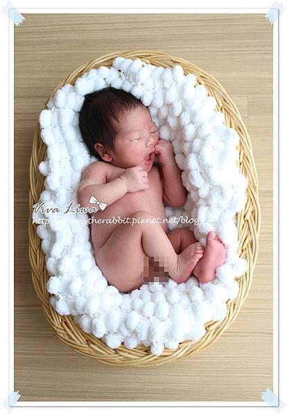 babypic22.jpg