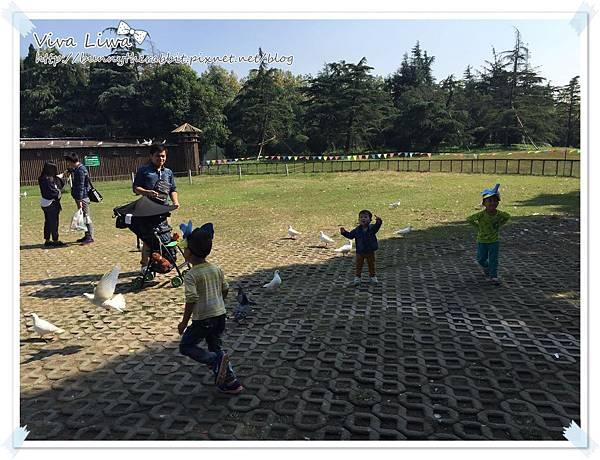 zoo20161108-2.jpg