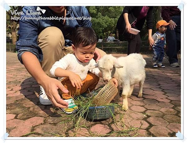 zoo20161108-10.jpg
