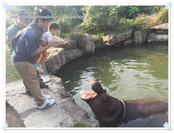 zoo20161108-30.jpg