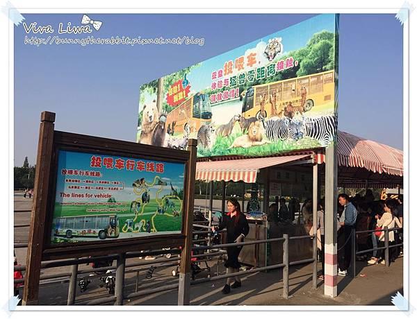 zoo20161108-33.jpg