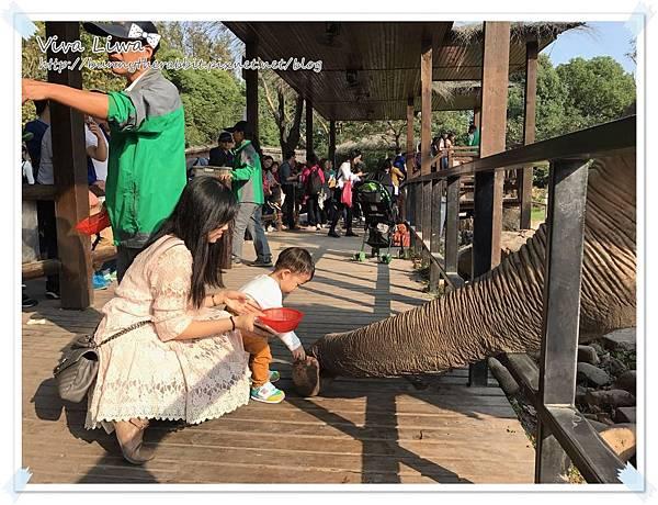 zoo20161108-34.jpg