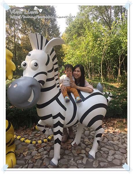 zoo20161108-54.jpg