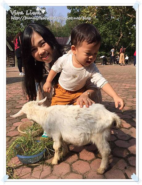 zoo20161108-52.jpg