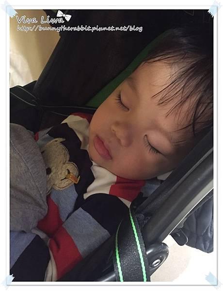 sleep20161214-1.jpg
