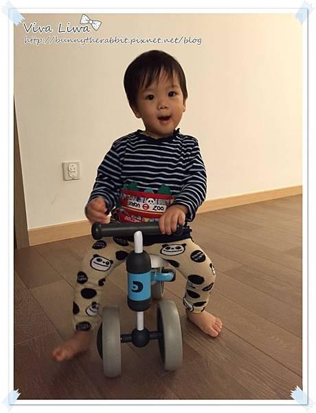 bike20170101-11.jpg