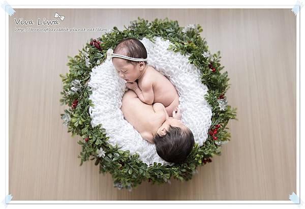 newborn pics b12.jpg