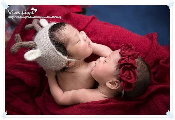 newborn pics b17.jpg