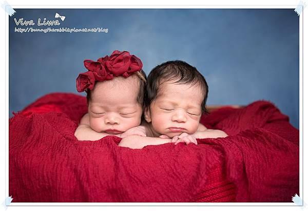 newborn pics b15.jpg