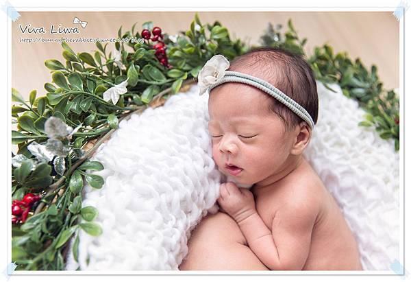 newborn pics b14.jpg