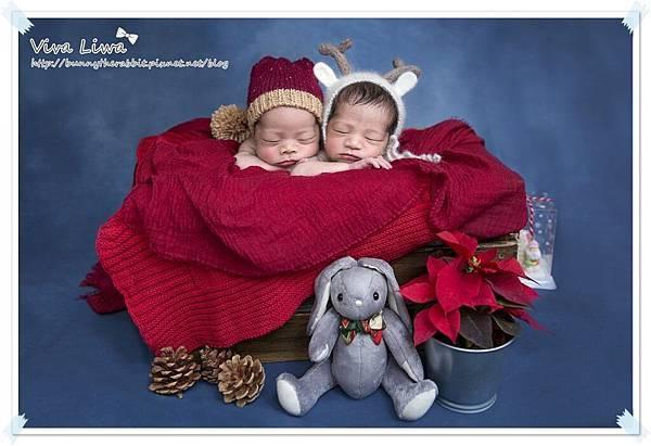 newborn pics b16.jpg
